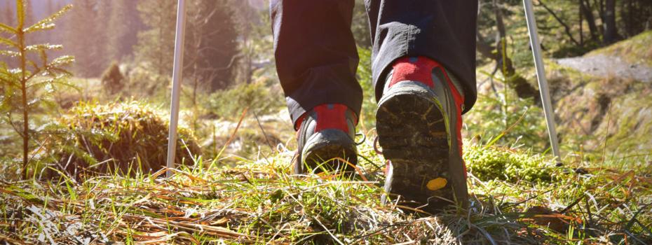 Jakie Buty Trekkingowe Dobrze Sprawdza Sie W Tatrach Informacje Przewodnik Tatrzanski Wycieczki W Tatry Przewodnik Zakopane